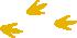 empreintes pas de canard